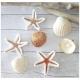 crochet étoile de mer ORIGINALS HOME CROCHET Talent il etait une fois dix doigts (1)
